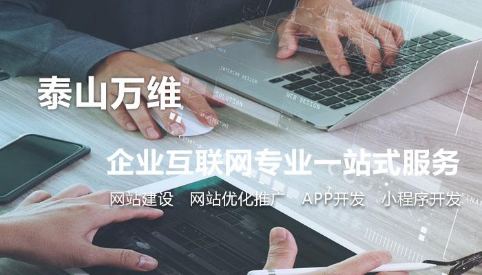 泰山万维-泰安网站建设一站式服务管家